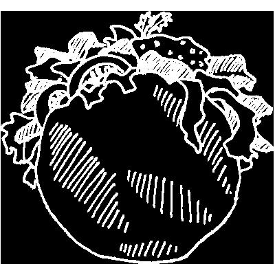 pita-desenho
